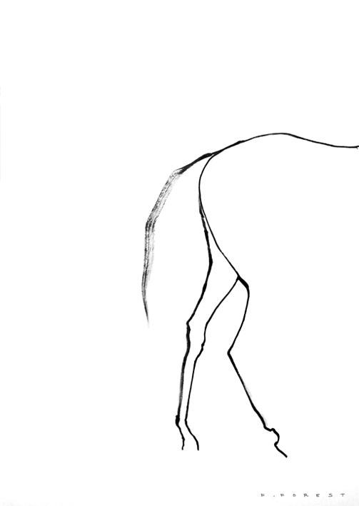 FForest_Drawing_Horse6.jpg