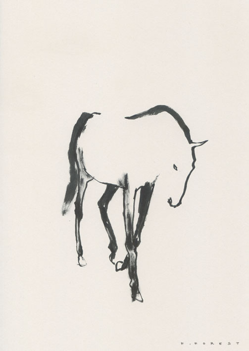 FForest_Drawing_Horse7.jpg