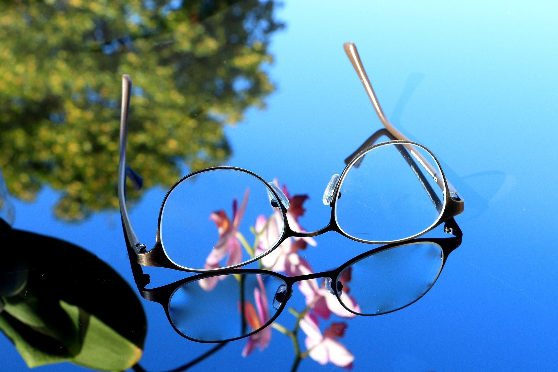 Glasses & Frames -
