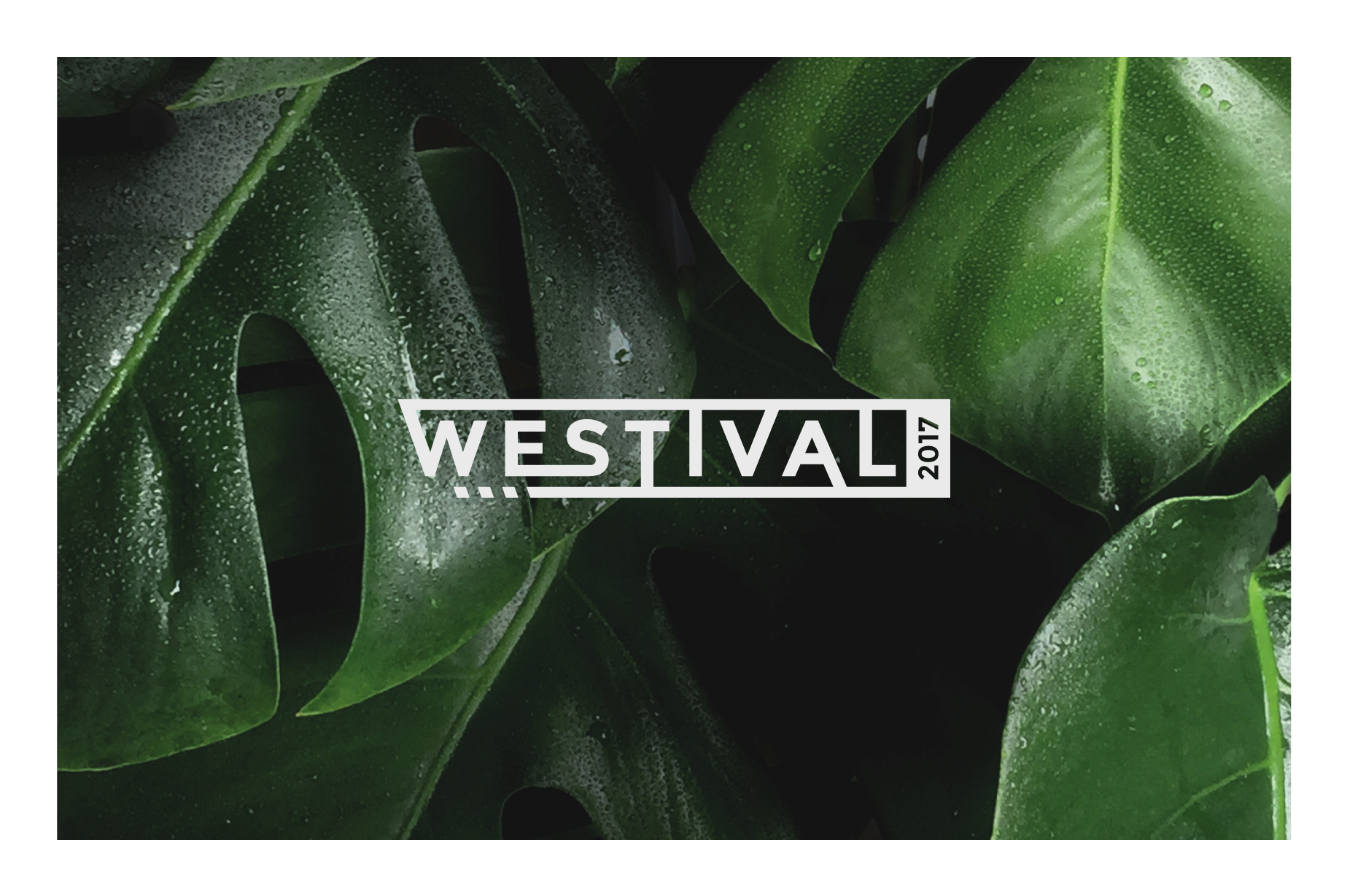 westival.jpg
