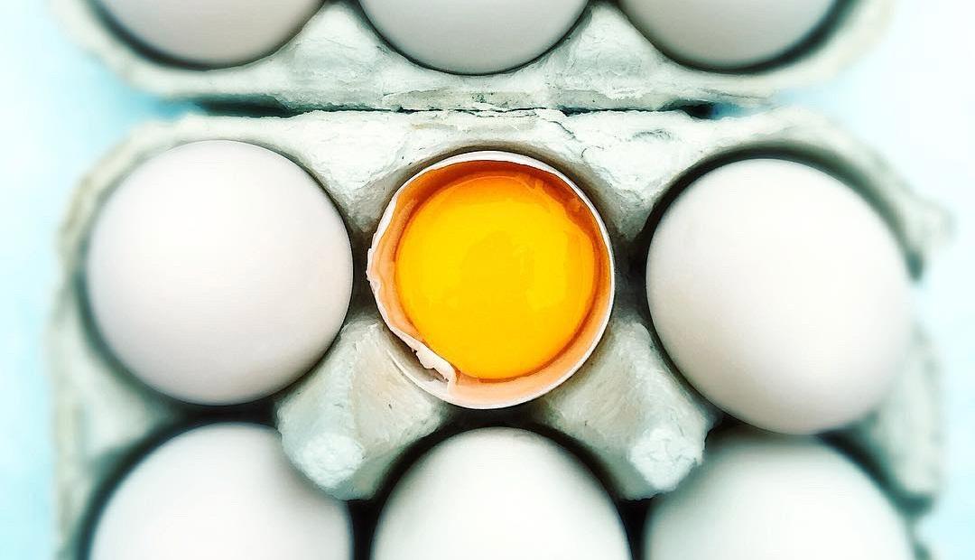 white+eggs.jpg