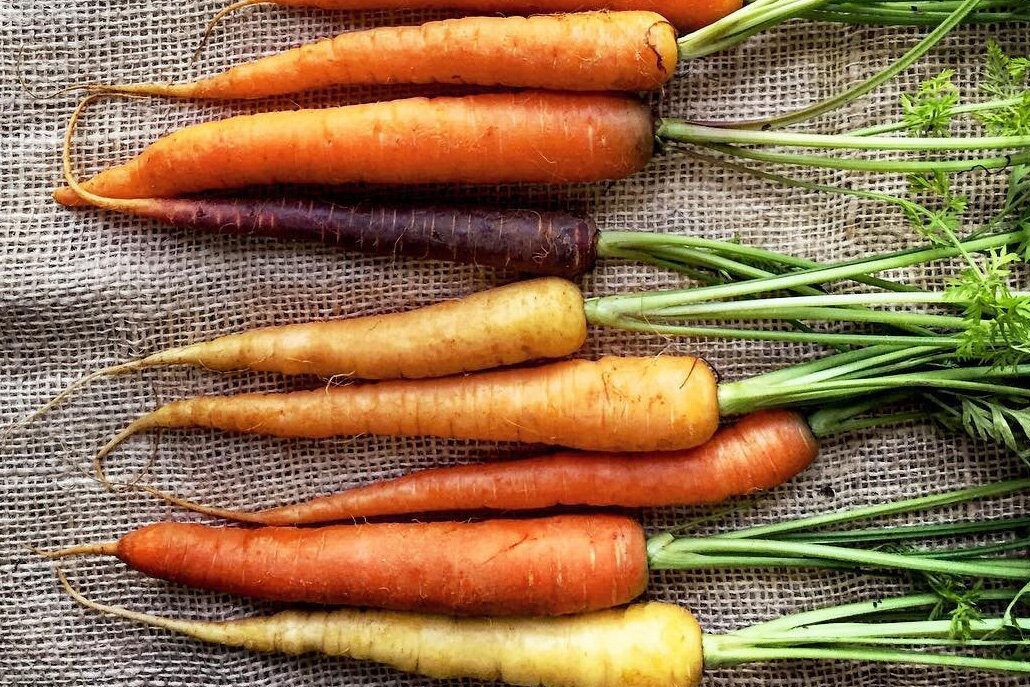 Behind the Cookbook: 50 Ways to Cook a Carrot
