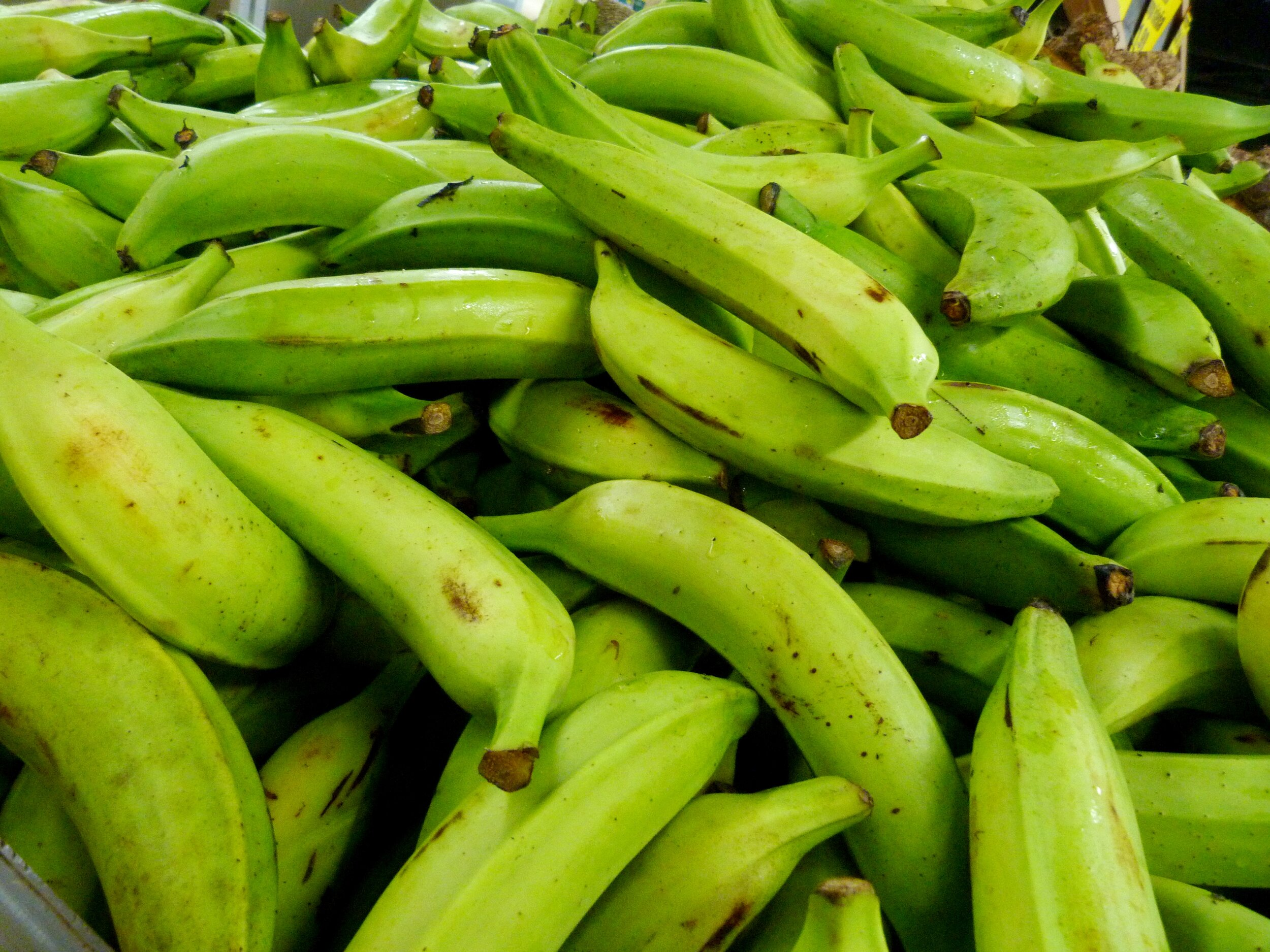 Matoke, green plantain, is the main ingredient in one of Yasmin's favorite dishes.