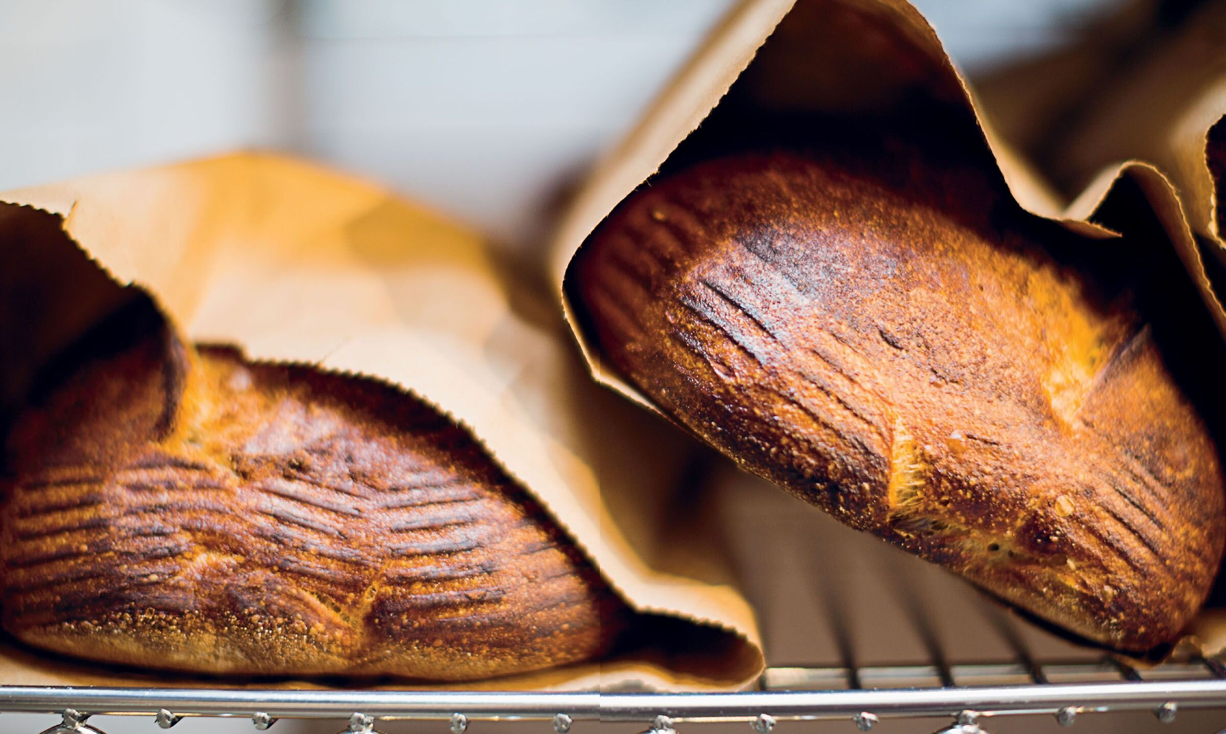 The Staff of Life: ckbk's bread-baking collection