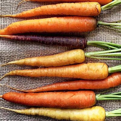 crop_carrot.jpg