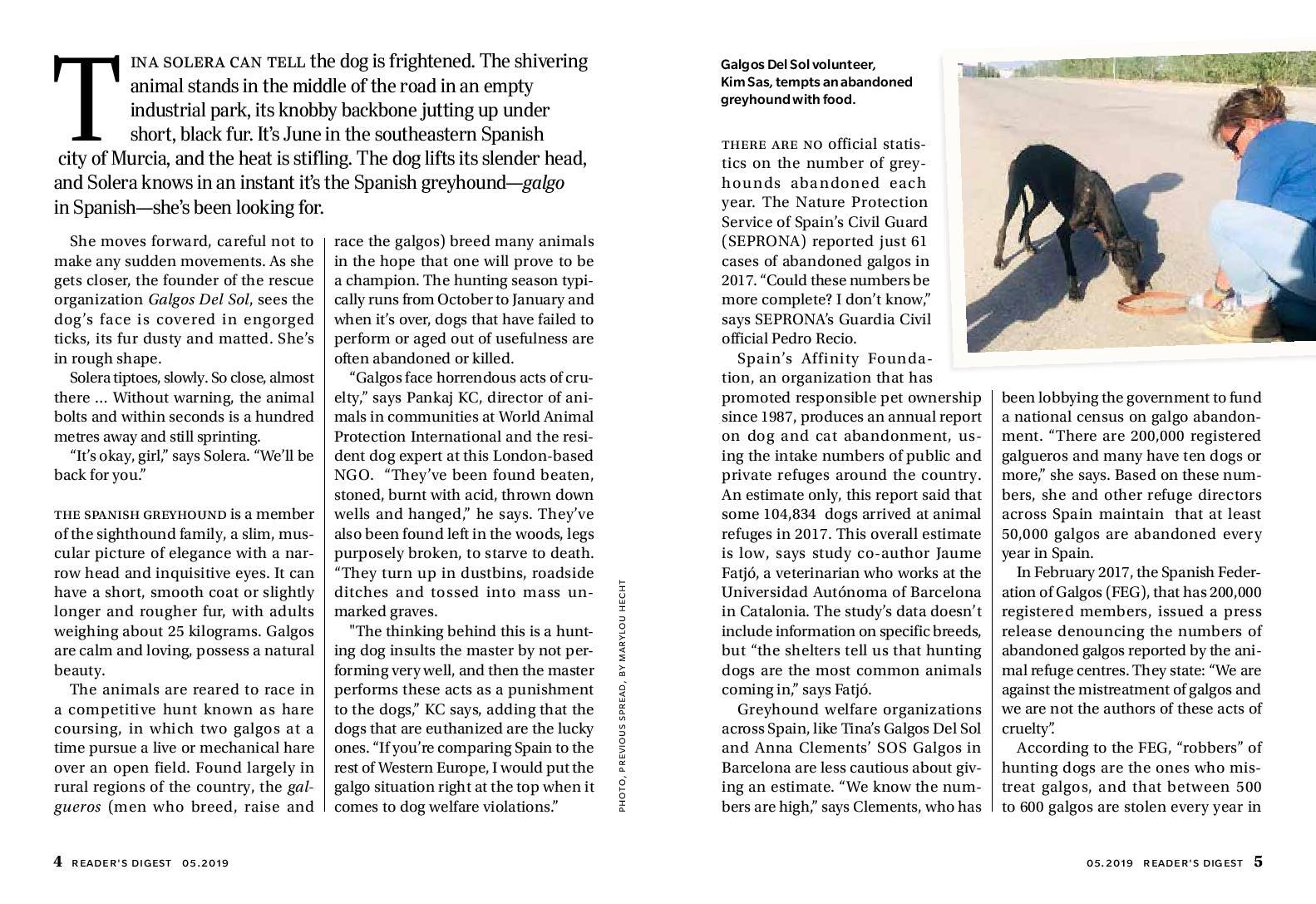 Galgos Story-page-002.jpg