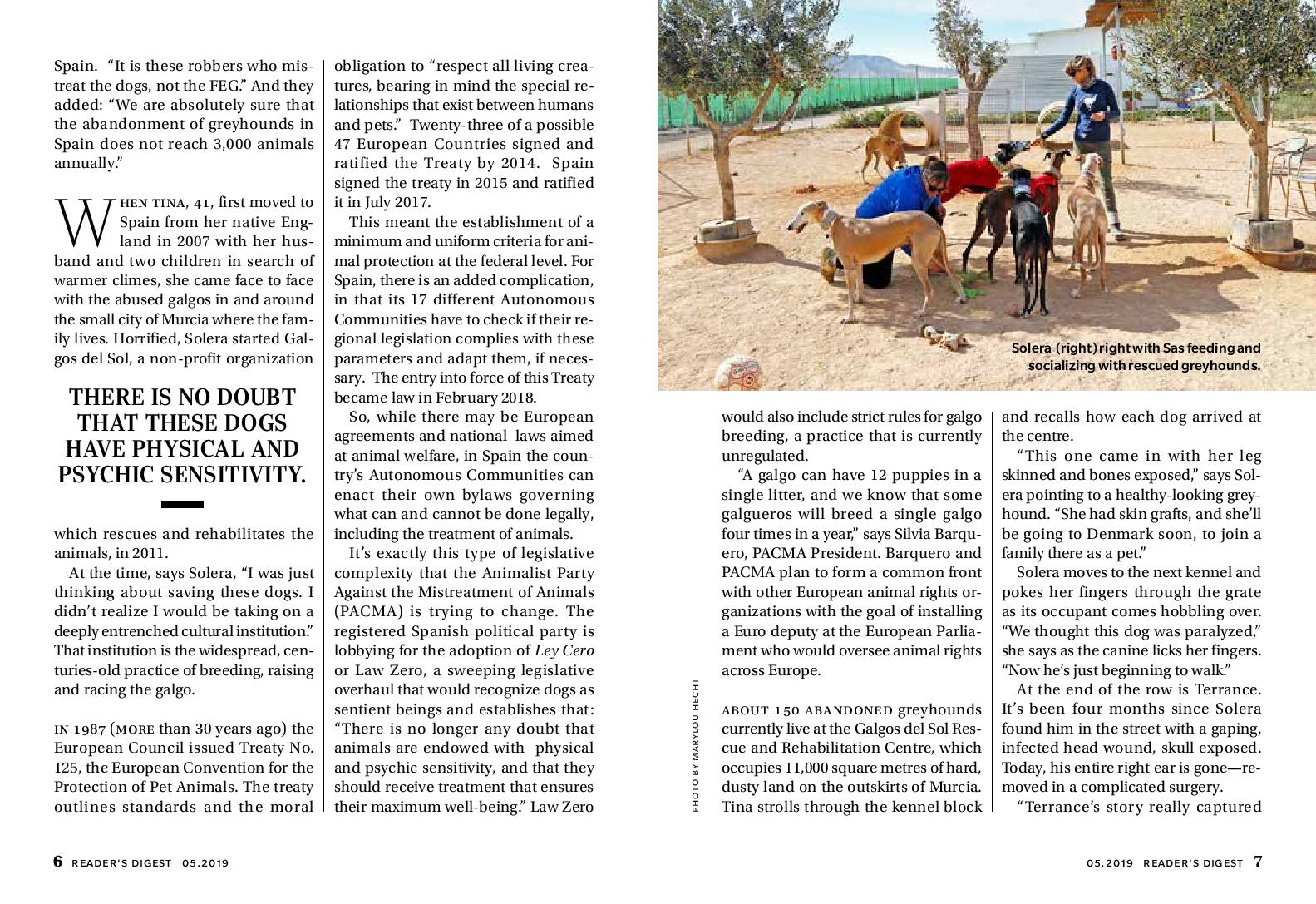 Galgos Story-page-003.jpg