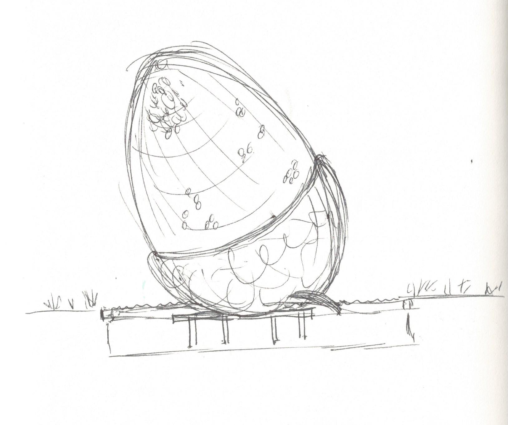 A sketch of the  Fallen Acorn  sculpture