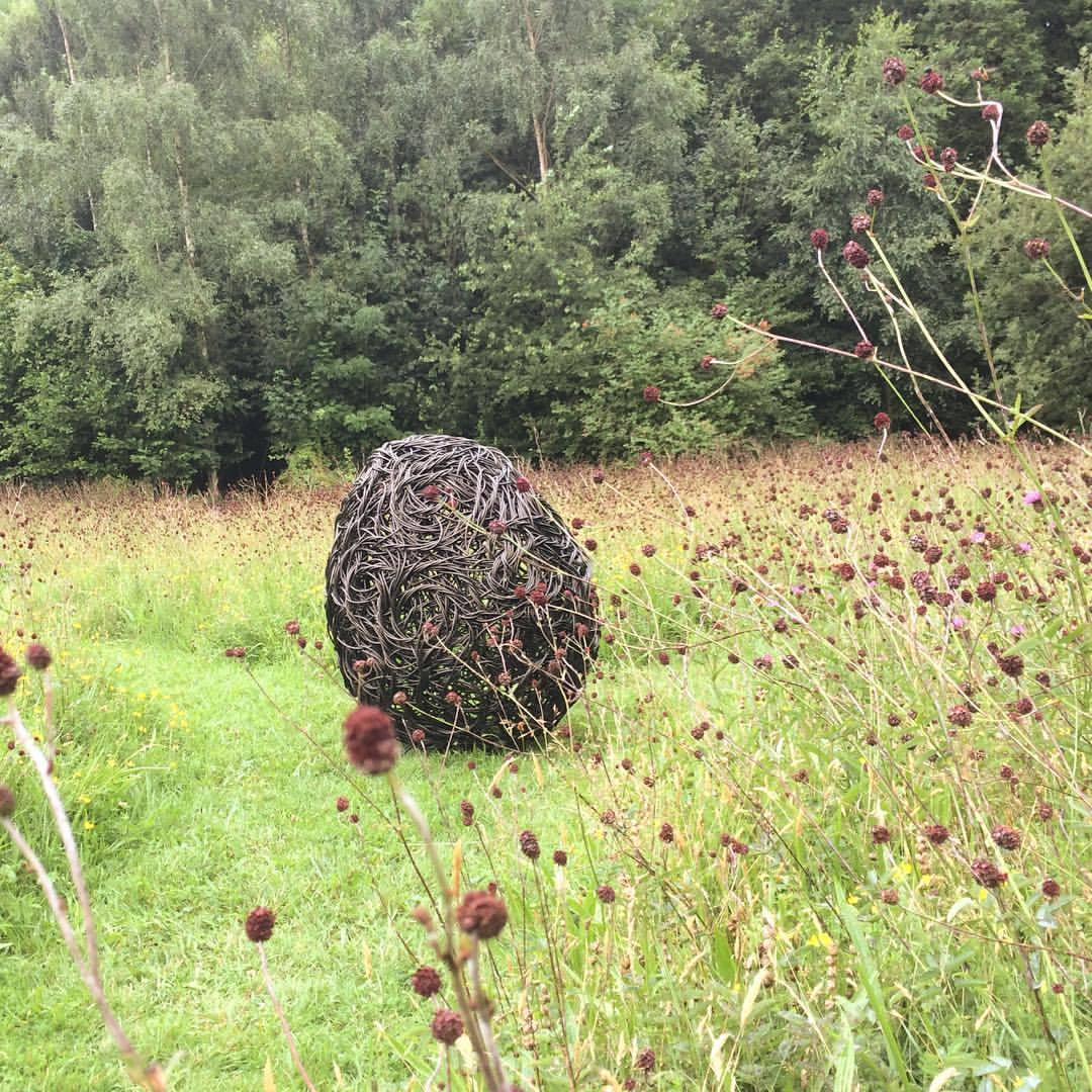 On site photo shoot today with a new sculpture in the beautiful meadows @weledauk #weaving #art #sculpture