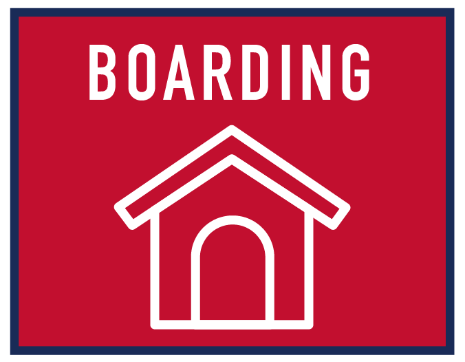 boarding-01.png