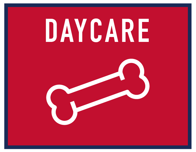 daycare-01.png