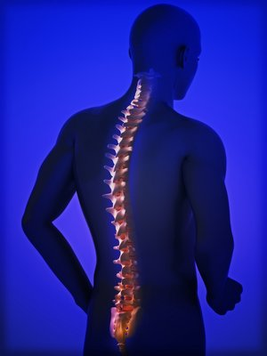 human-spine-PMHCG87_31475a2efcd58c9c6194e25f7b3d8899.jpg