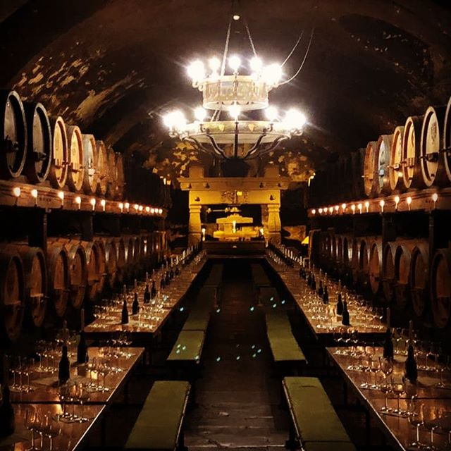 The #winecellar at the Residenz in #würzburg