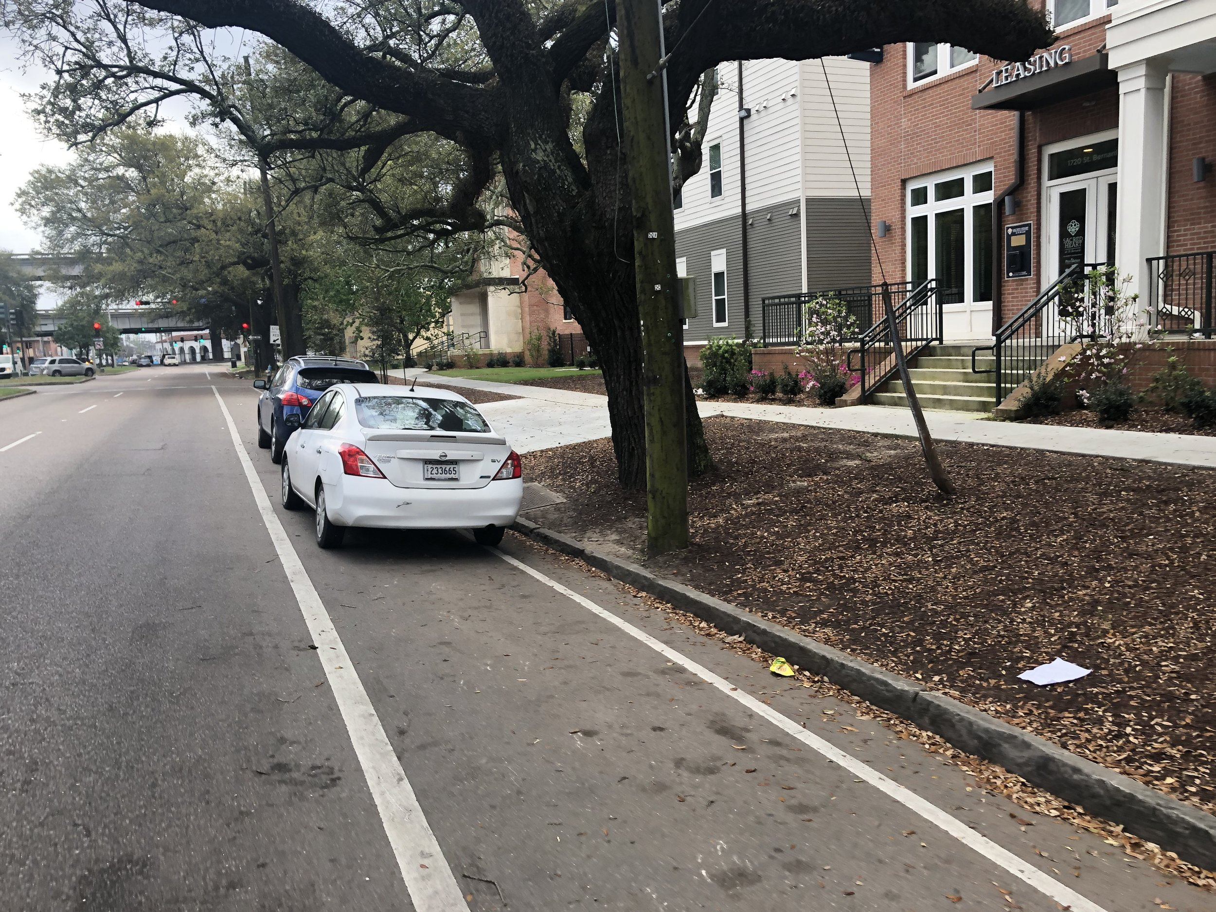 During public comment pictures of cars parked in bike lanes, like this one taken this morning on St. Bernard Ave., flashed on the chamber monitors.