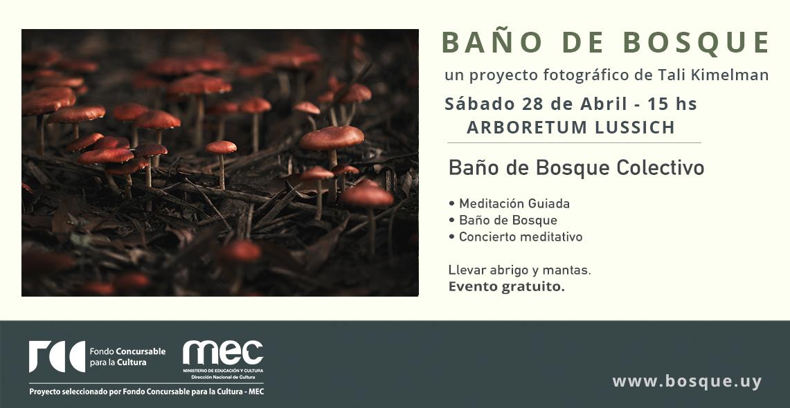 BañoBosque_Abril.jpg