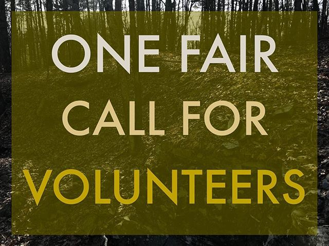 One Fair is looking for volunteers to be a part of pulling off this ambitious event!  Be a part of an inspiring day of Earth-Love and People-Power! Want to help make this happen? Available for a few hours on either Friday June 7 (setup 1p-4p) or Saturday June 8 (all times)? DM us, tag some friends, or write us through the website (link in bio) 🌎🌿💙