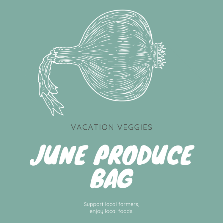 June Produce Bag   $49.00   In June, the Vacation Veggies Produce Bag will contain enough fresh produce to feed a family of four at least three servings of fruit and vegetables for the week. Listed below are the types of fruit and vegetables typically included in a June produce bag; however, the actual contents of your bag will vary depending on each week's harvest.   Summer and zucchini squash    Blueberries    Variety of potatoes    Blackberries    Green beans    Variety of tomatoes    Herbs and cucumbers    Onions and scallions    Variety of lettuces and radish   Each customer vacationing in Wrightsville Beach during the month of June may order one or more bags of produce.