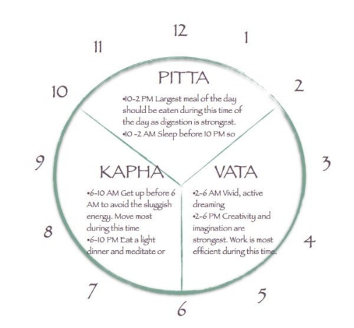 The Ayurvedic or Daily Energy Clock