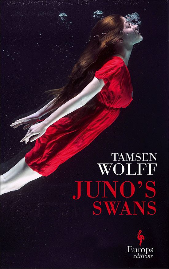 juno's swans, book, tamsen wolff, europa editions