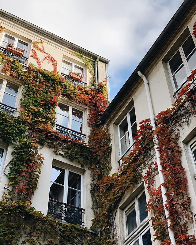 October in Paris ✨