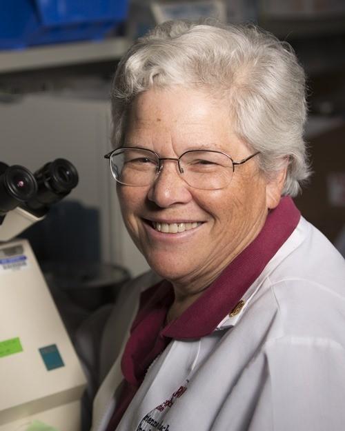 Adrienne C. Scheck, PhD, Senior Research Scientist, Phoenix Children's Hospital