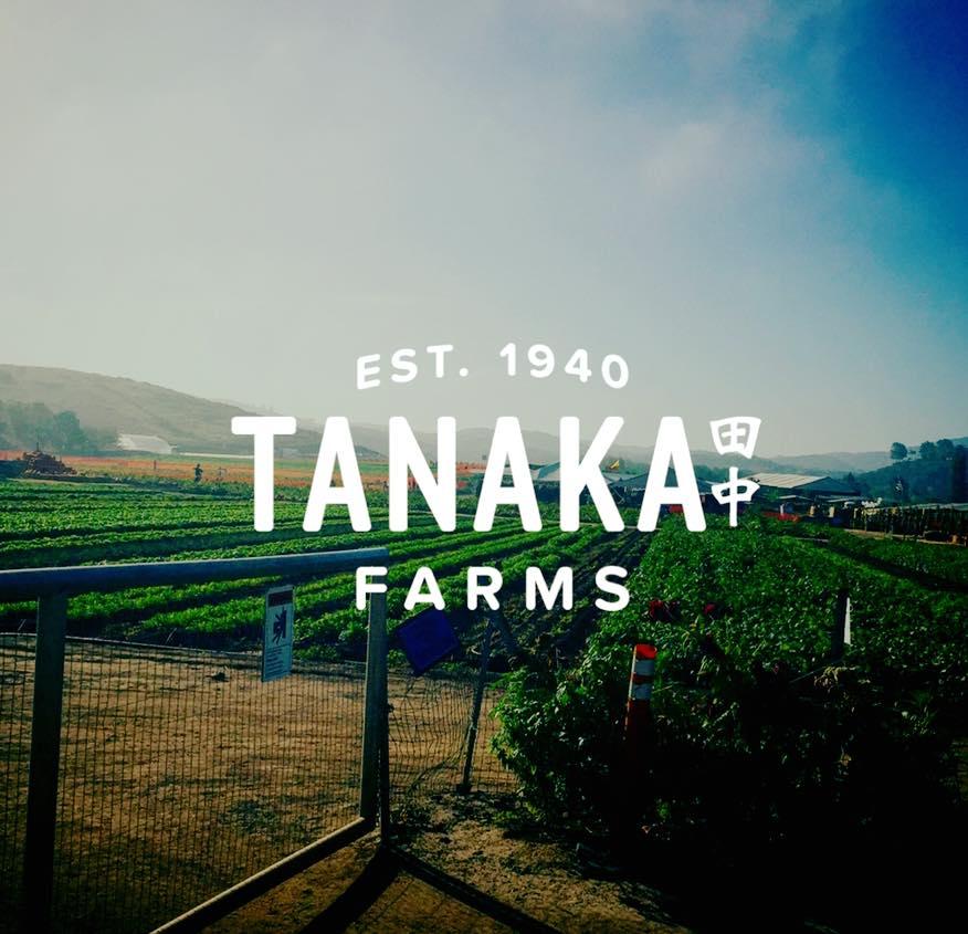 Tanaka Pic.jpg