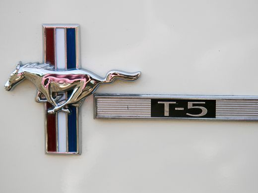 1966-ford-mustang-t5-david-beyer.JPG
