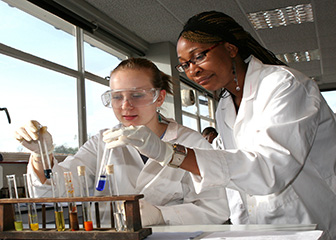 chemical technicians -