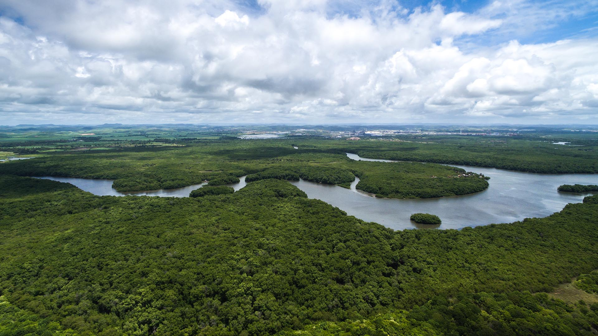 Um dos muitos trechos do rio na região metropolitana de Manaus (AM).