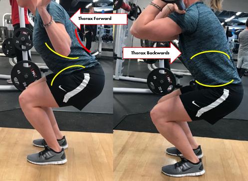 the squat 2.png