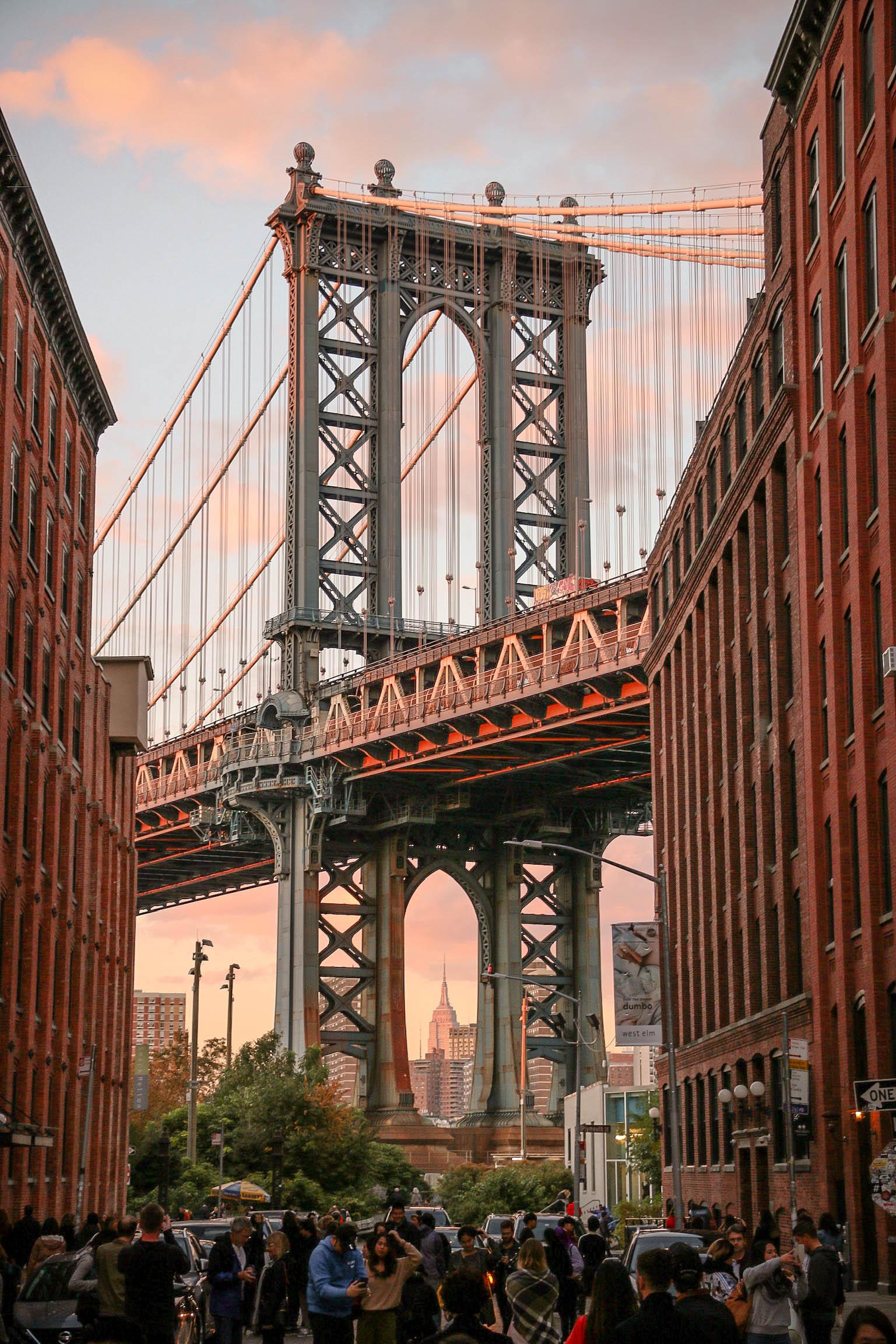 @dmvcollins9 - Brooklyn, NY