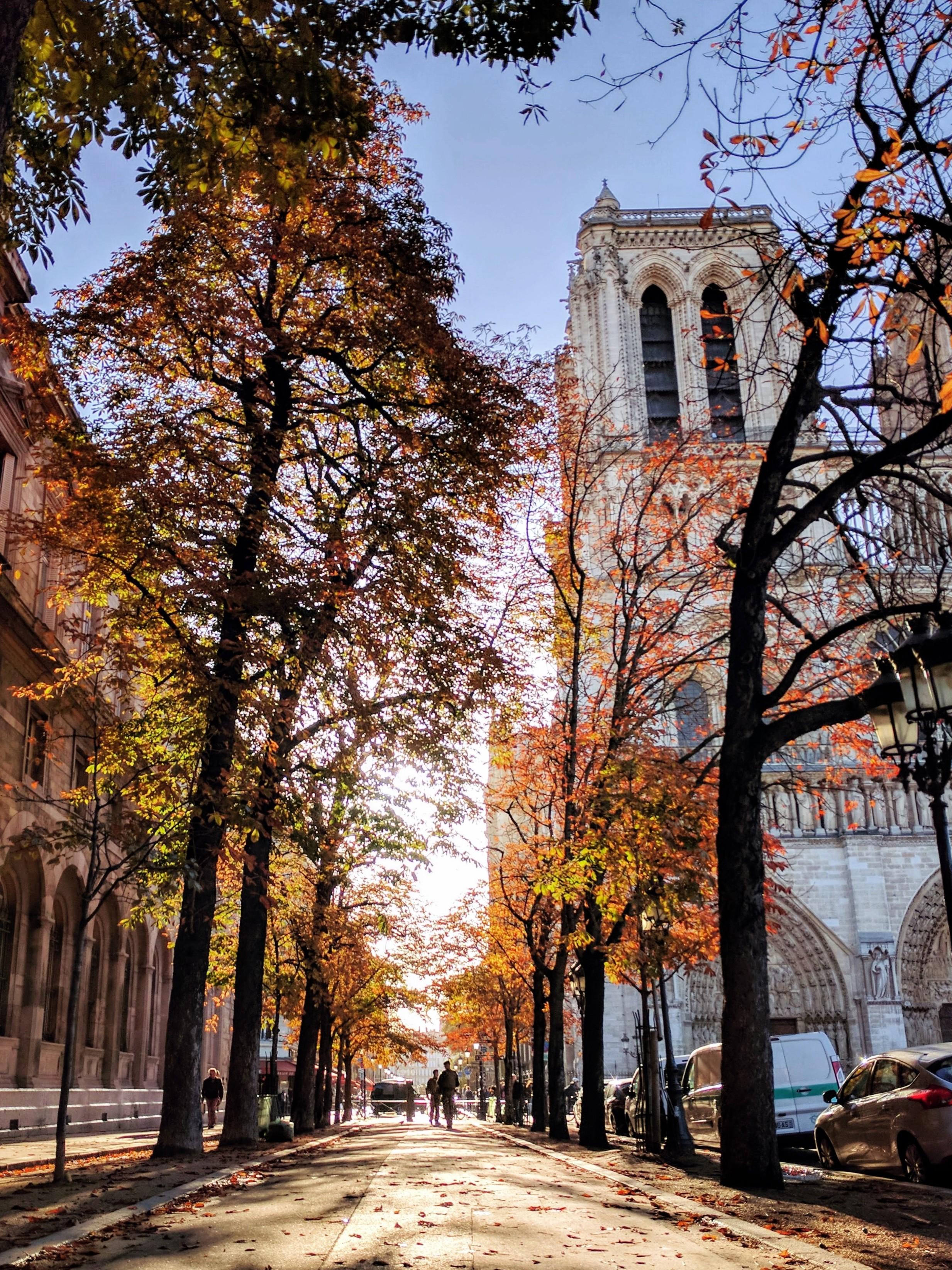 @kristinamico - Notre Dame, Paris, France