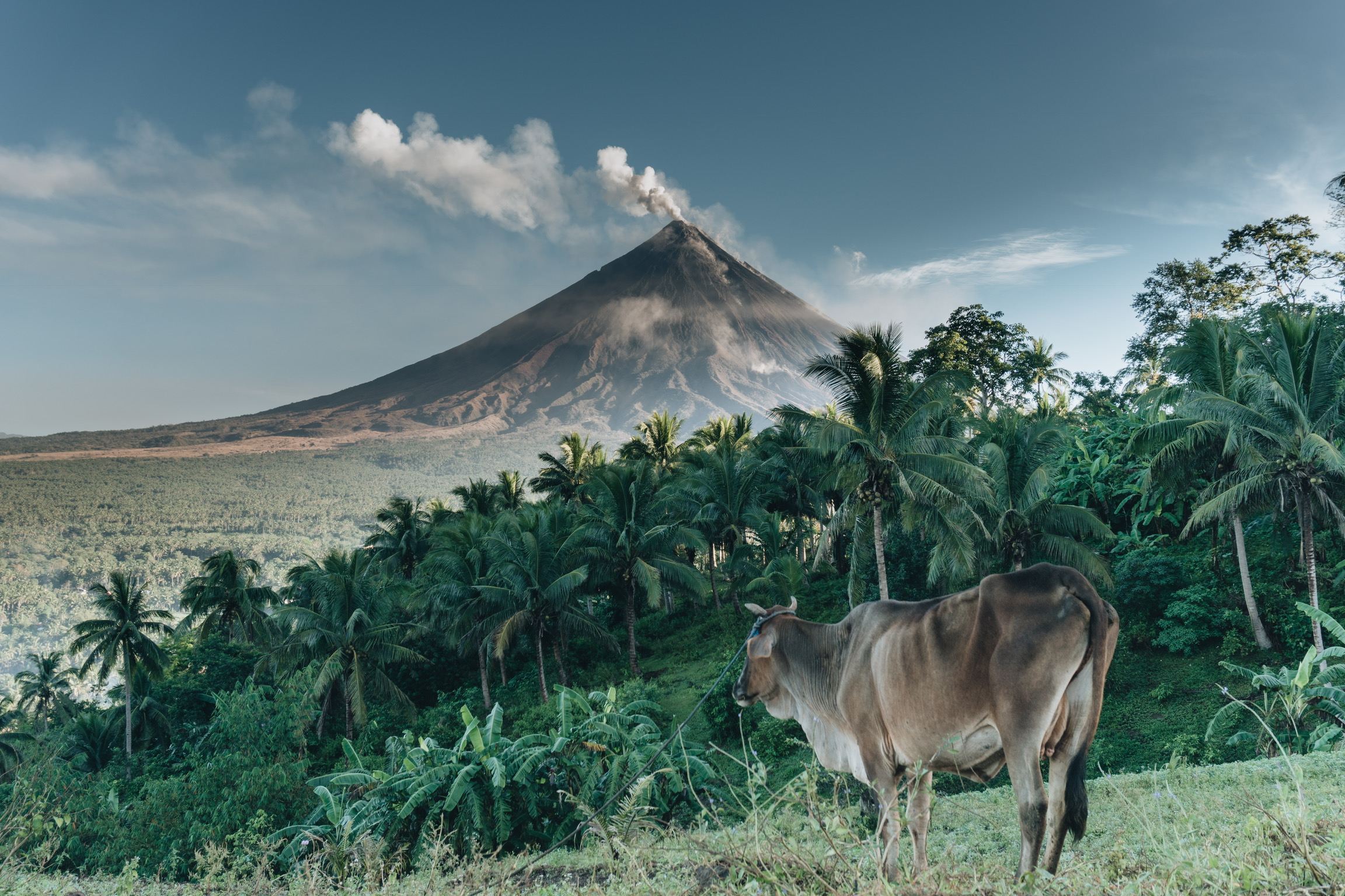 @lhermida - Albay, Philippines