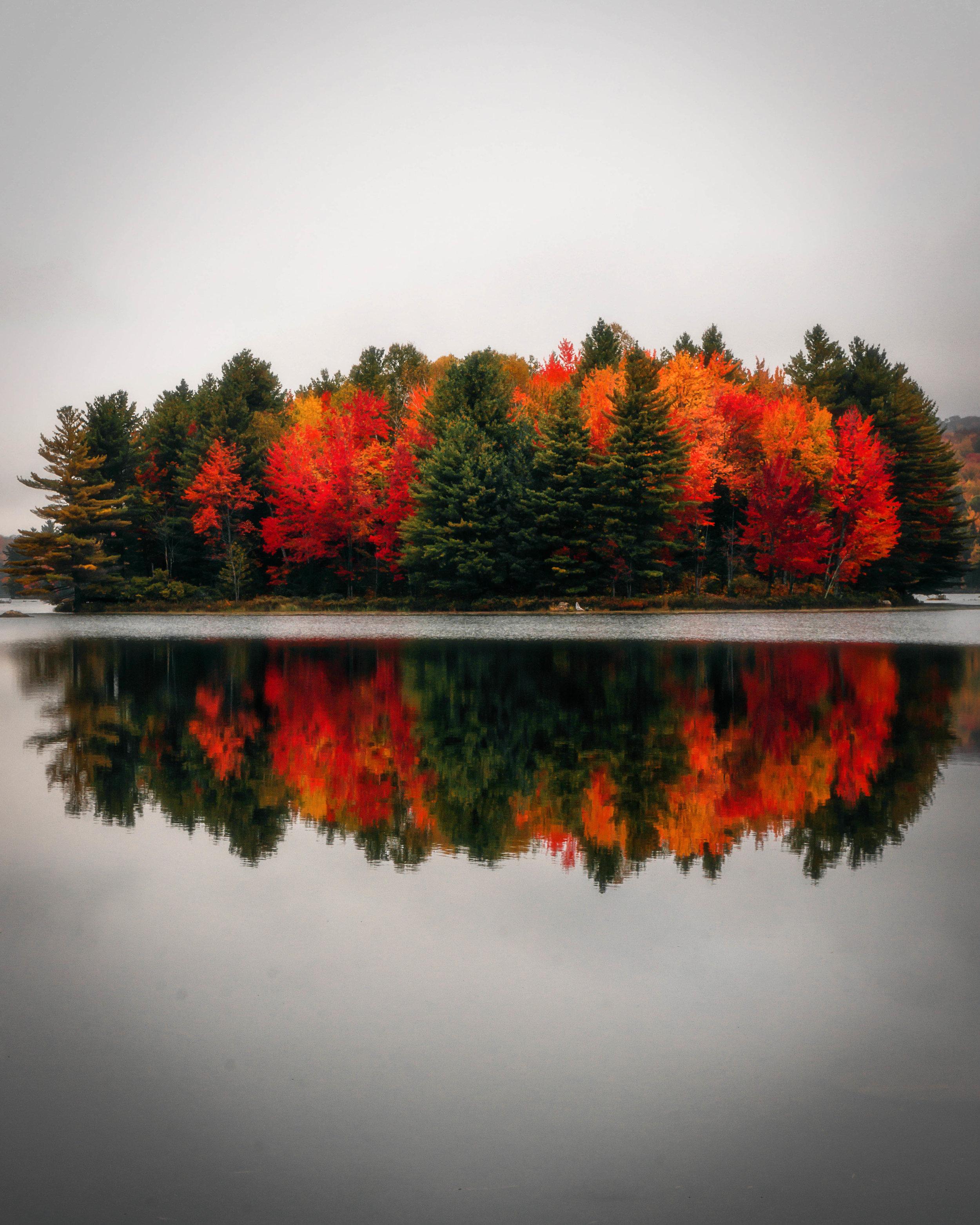 @photonicstories - Quebec, Canada