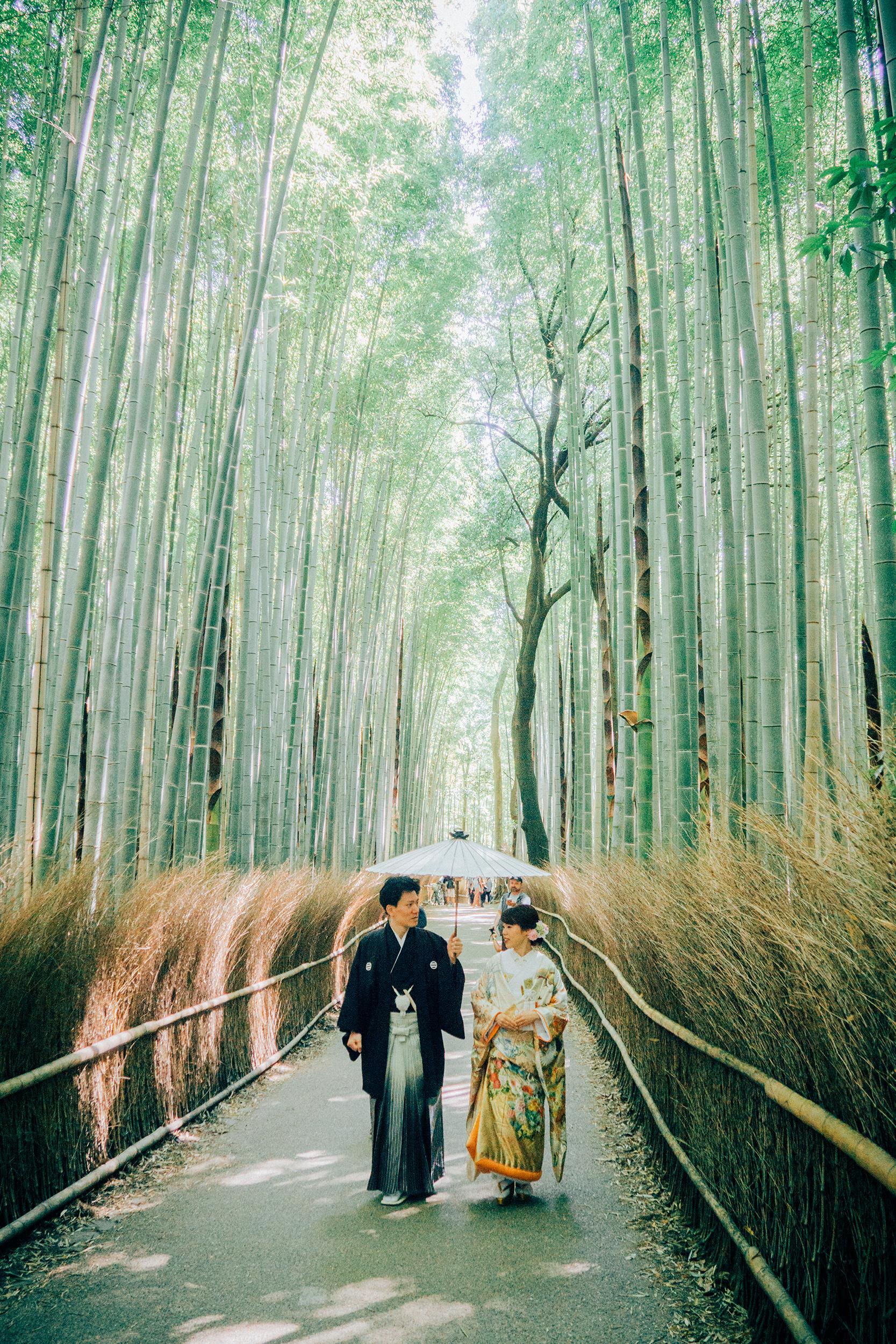 @xlixir - Kyoto, Japan