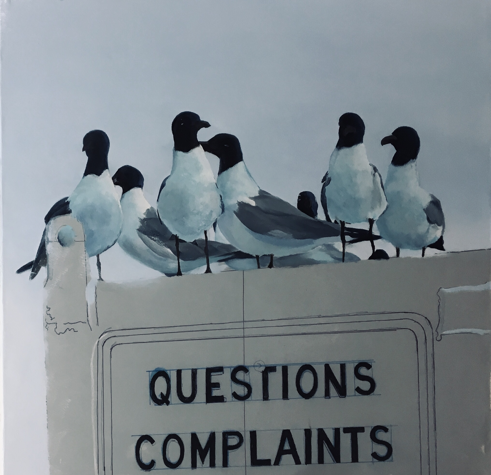 Complaint Department: - Session 7: Continuing with the gulls.