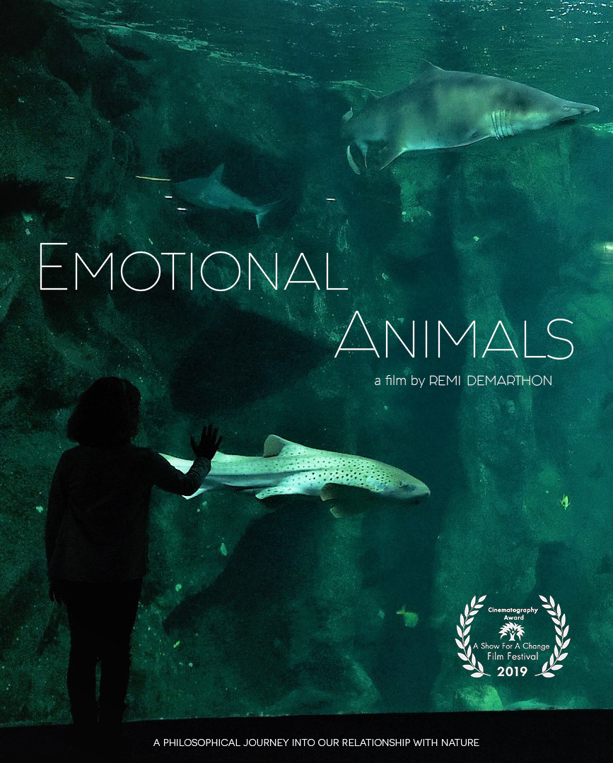 Affiche emotional animals award.png
