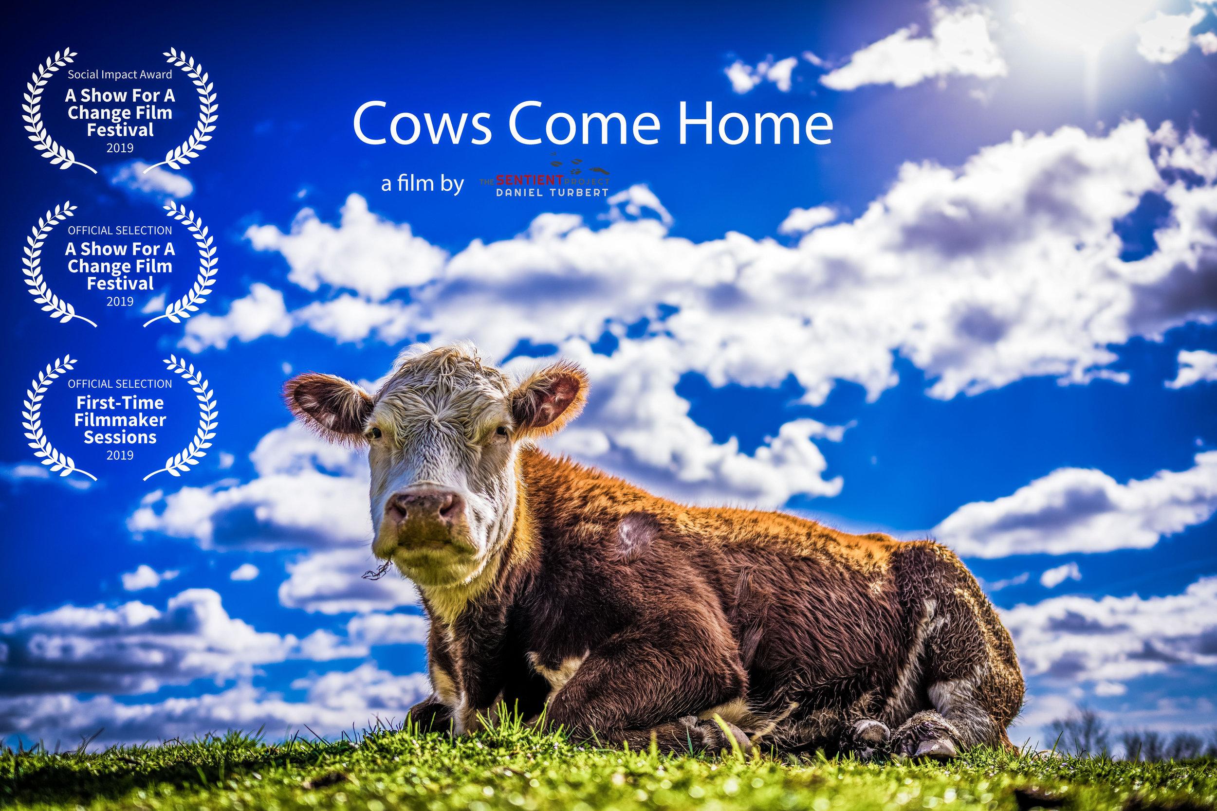 CowsComeHomePoster.jpg