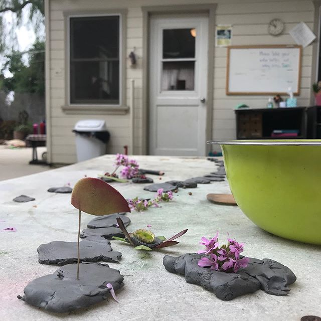 Clay and flowers in the small yard has lead to some beautiful compositions with some interesting stories. #littlethings #simplebeauty #cottagecoopschool