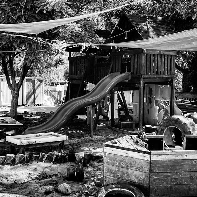 A black and white capture of the yard before our Rainforest class. #blackandwhite #bigyard #bw #cottagecoopschool