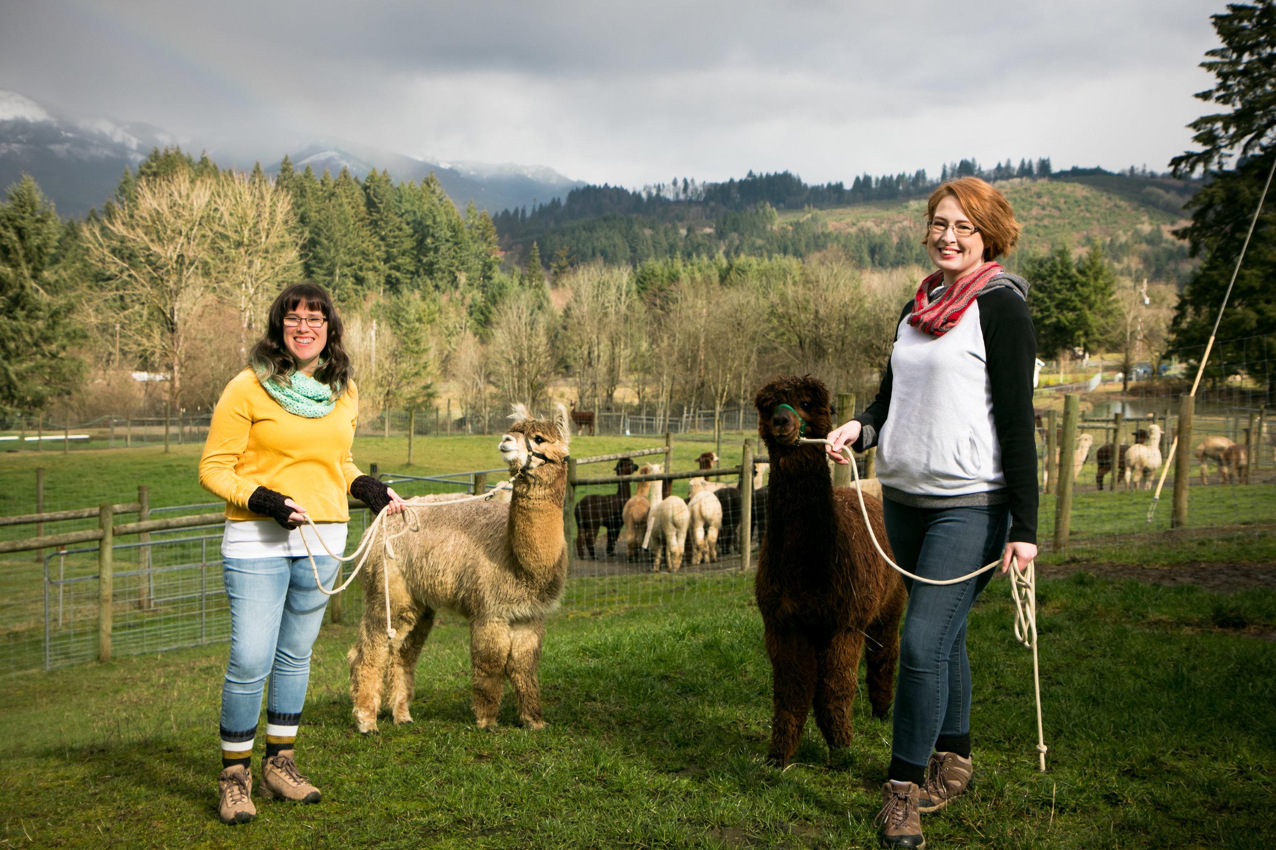 Photography by: Amanda Goff of  Silver Keys Media  Location: White Oak Alpacas