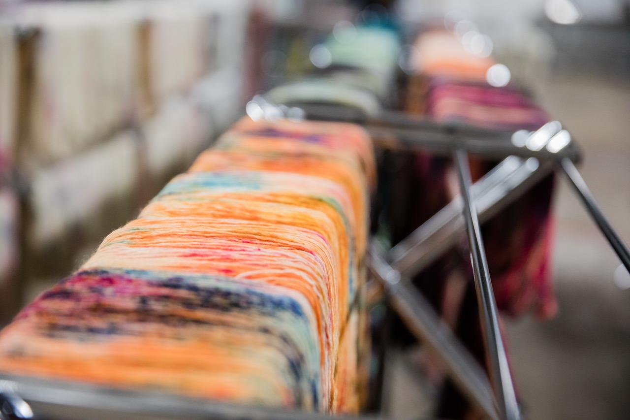 Primrose Yarn Co Studio