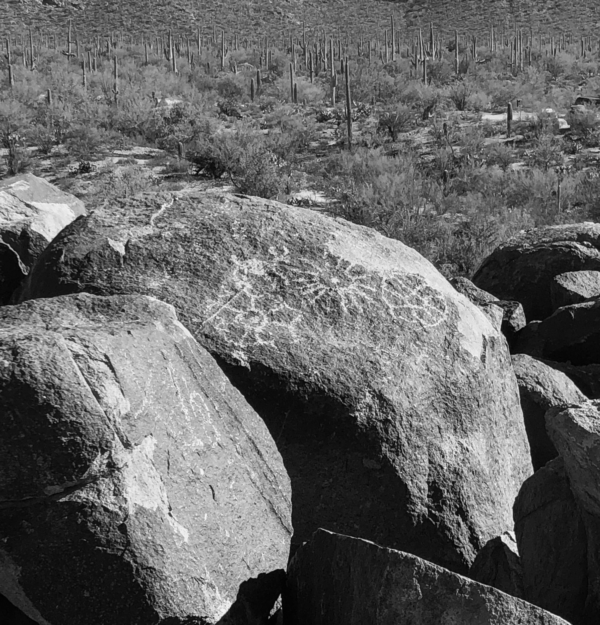 Petroglyphs as seen from the Signal Hill picnic area.
