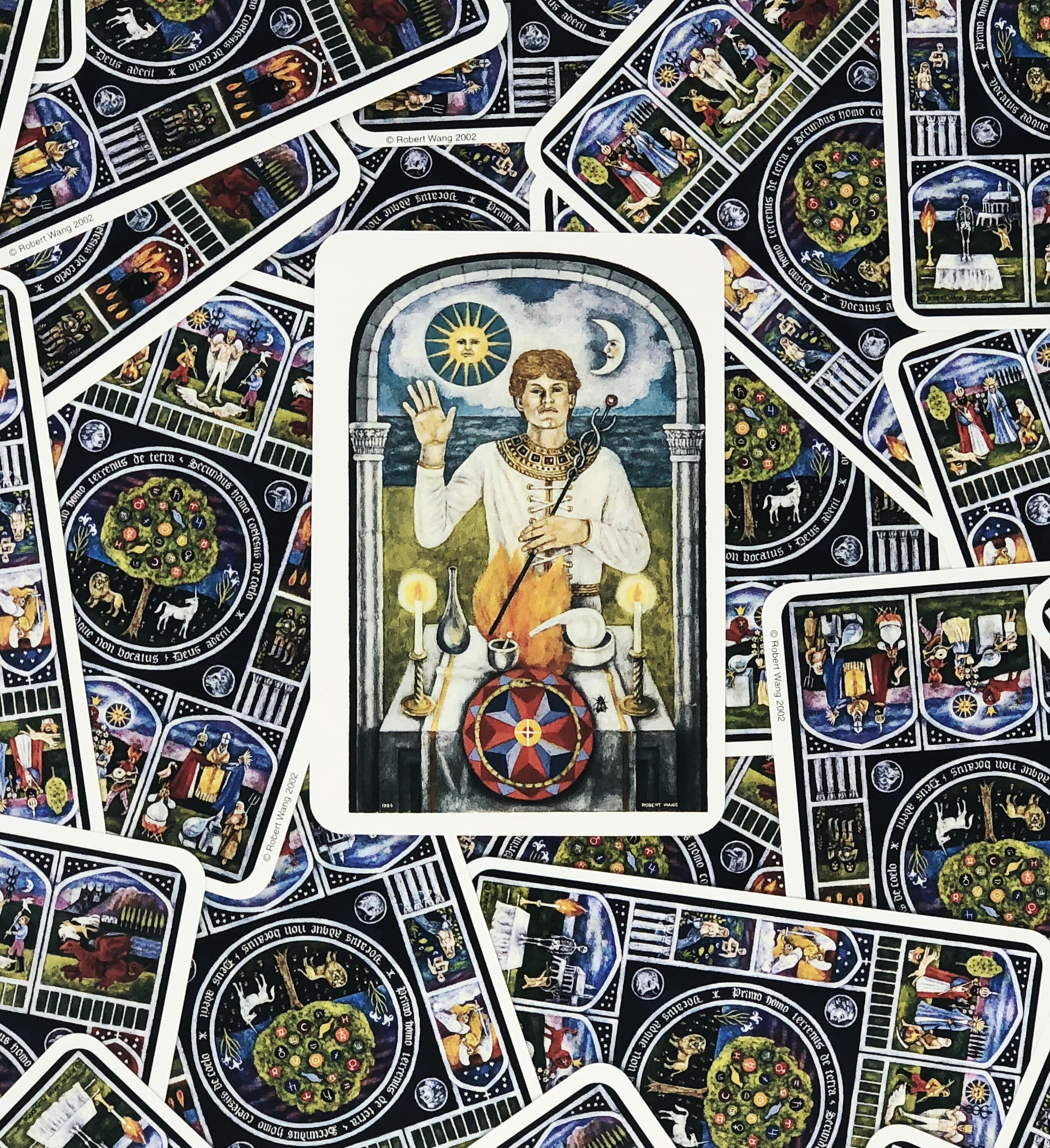 Deck:   The Jungian Tarot