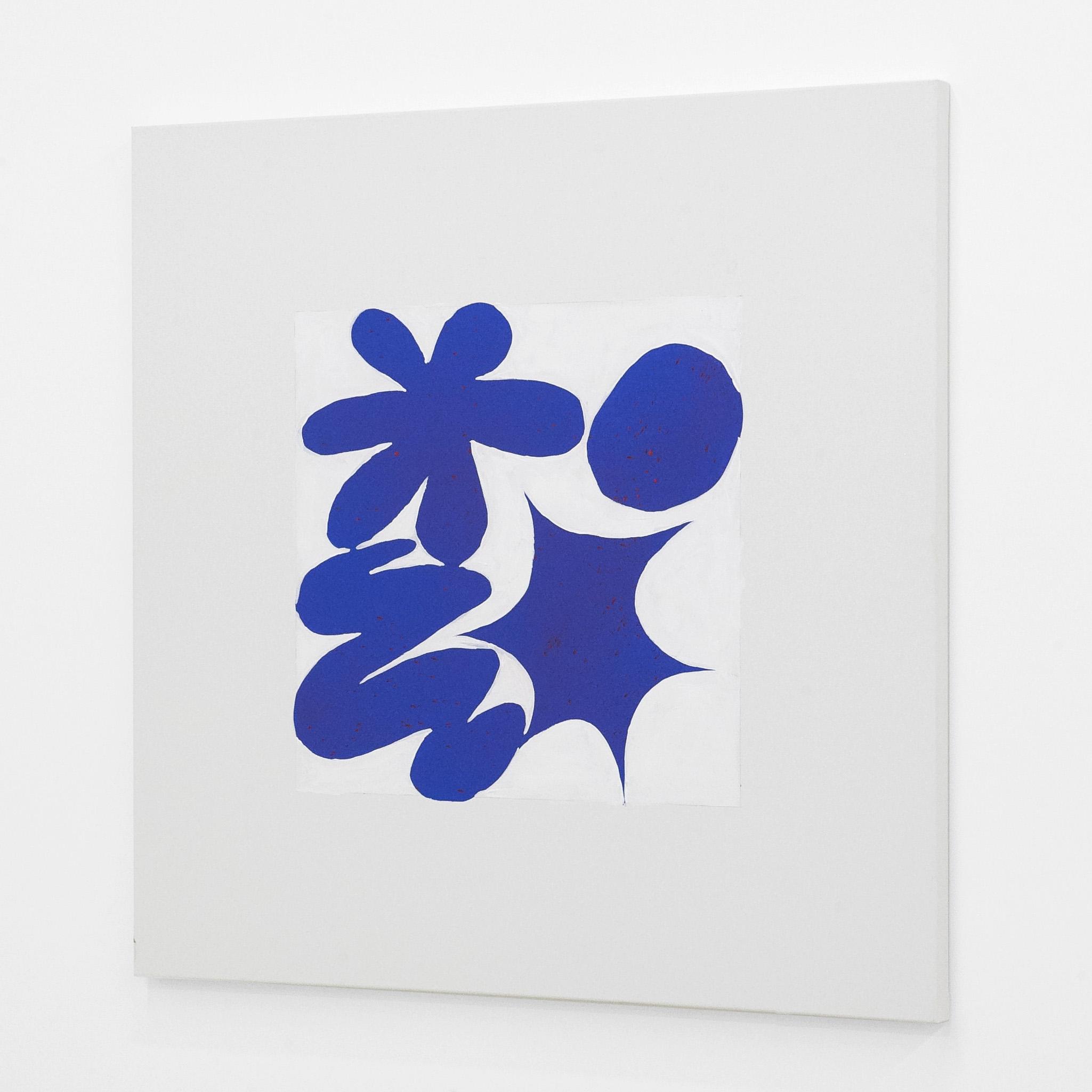chazbear_lrg_square_blue_4.jpg