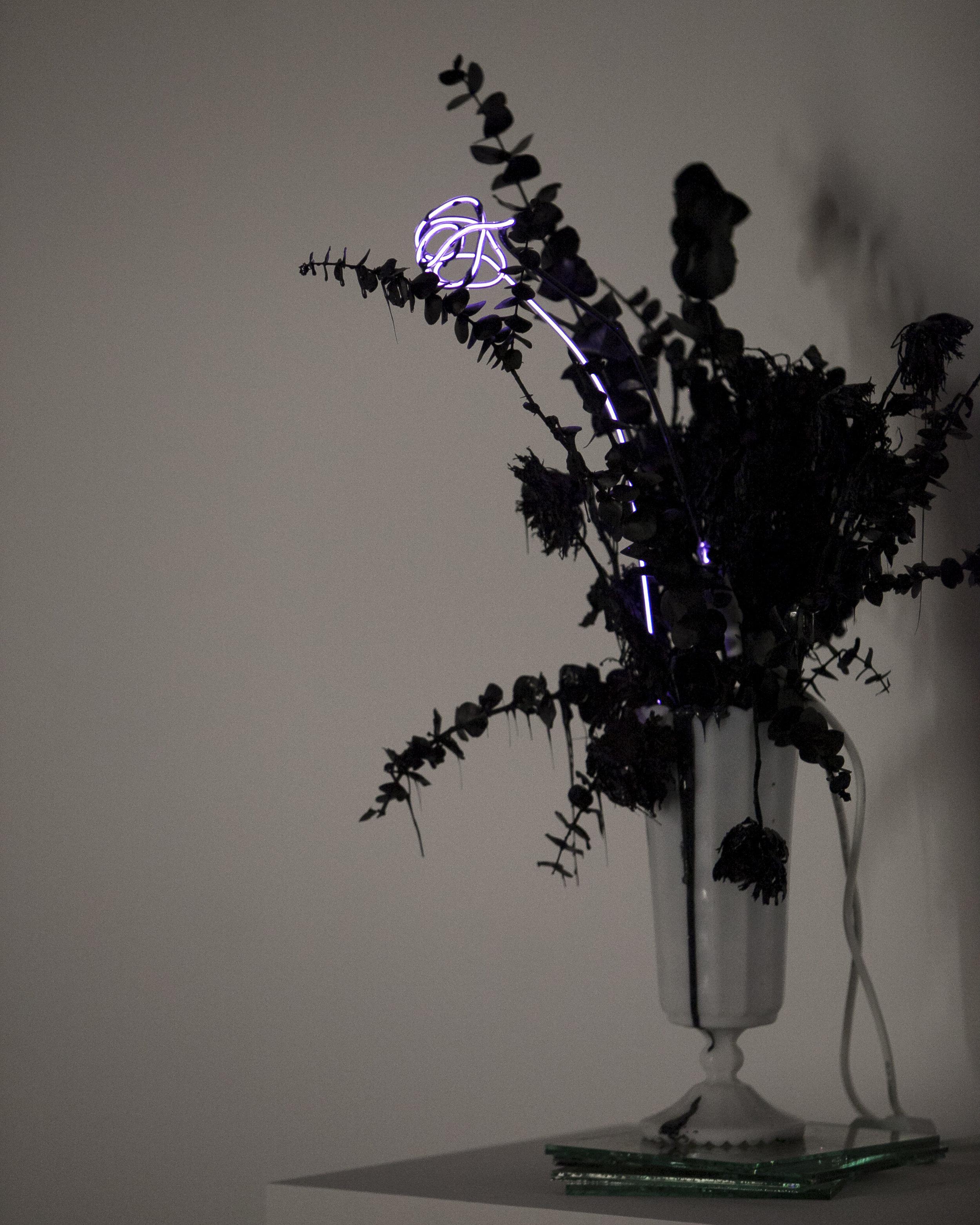 merylpataky_vase_purple_4.jpg