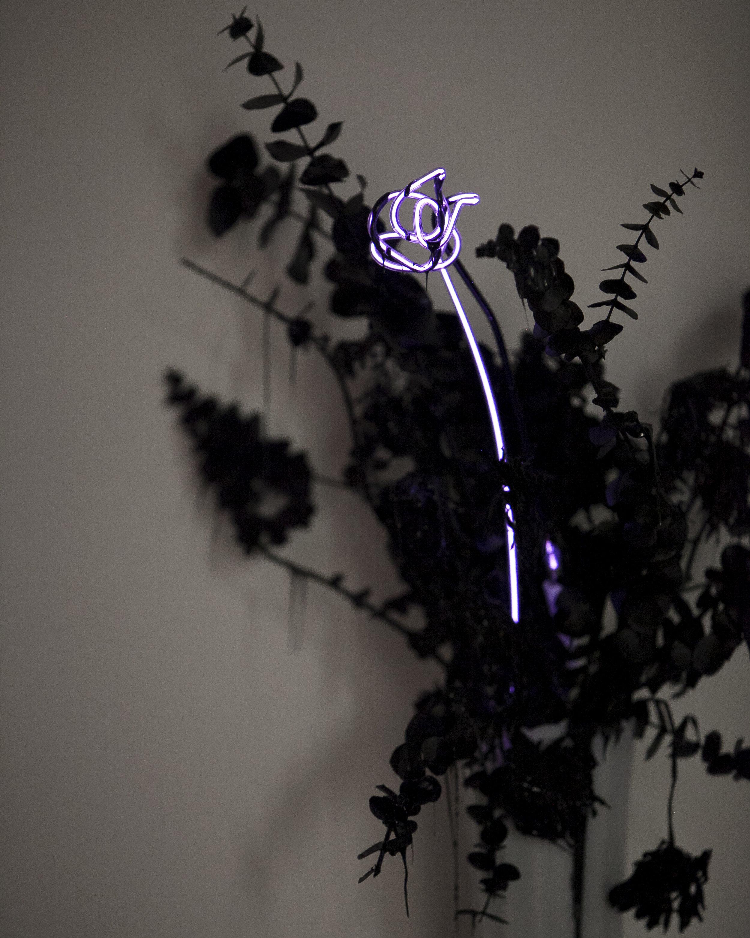 merylpataky_vase_purple_6.jpg