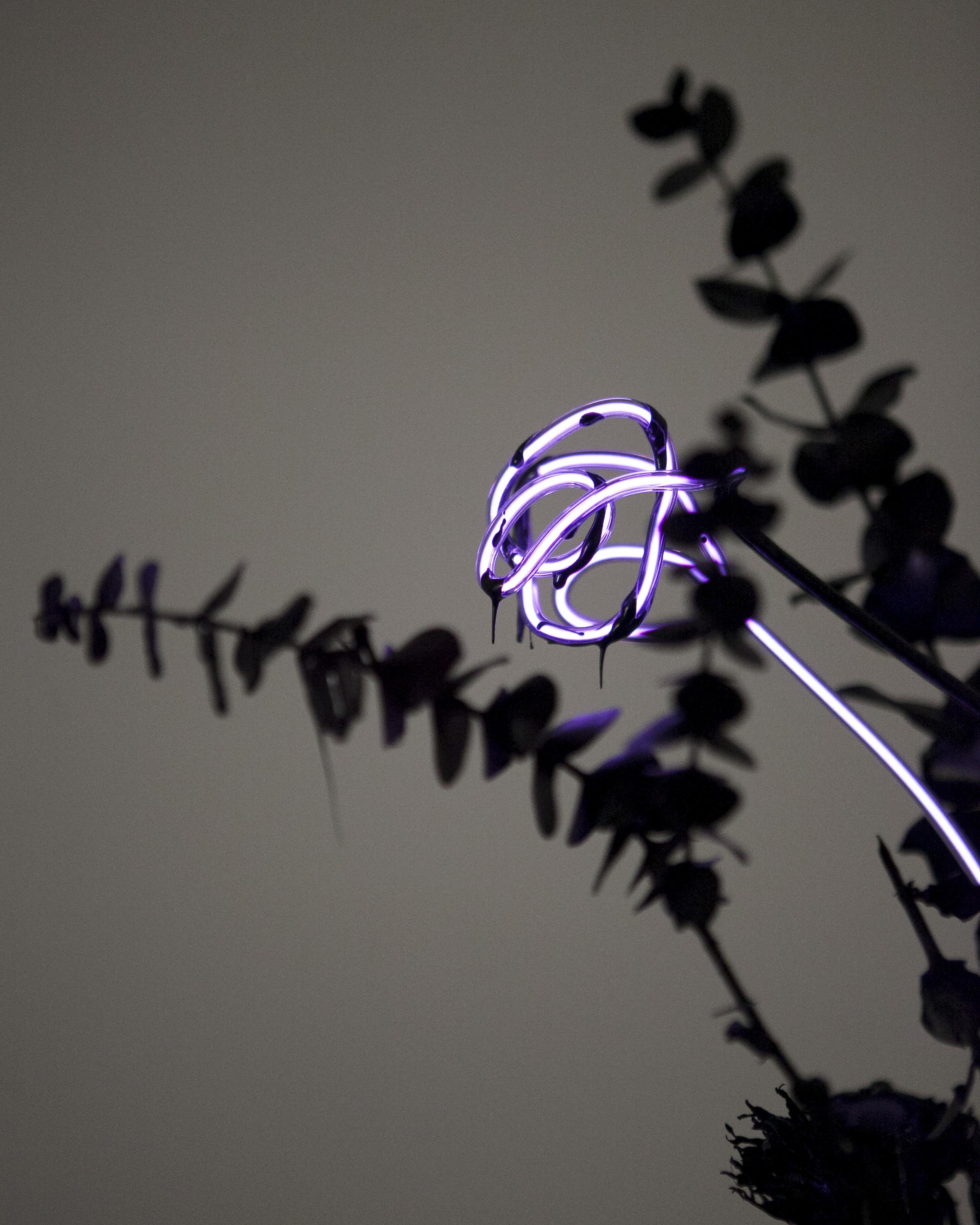 merylpataky_vase_purple_8.jpg