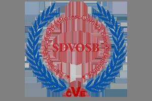 SDVOSB-300.png