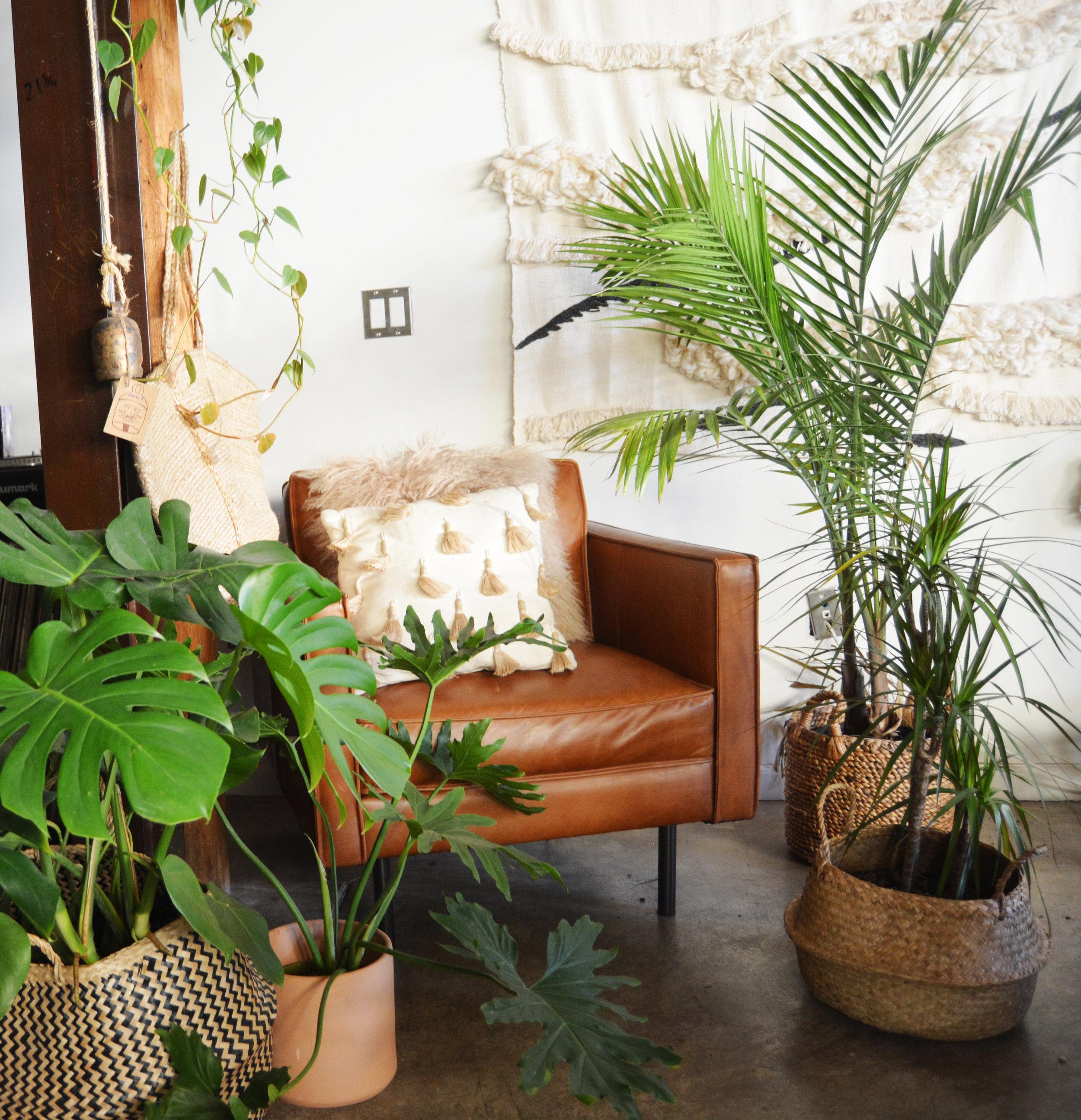 livingroom1_CROP.jpg